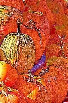 Pumpkin Patch by Shari Whittaker