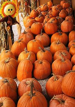 Pumpkins by John Scates