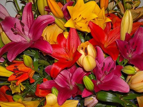 Purple And Color Lilies by Liliana Ducoure