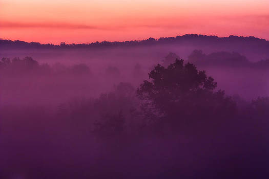 Purple Dawn by Matt  Trimble