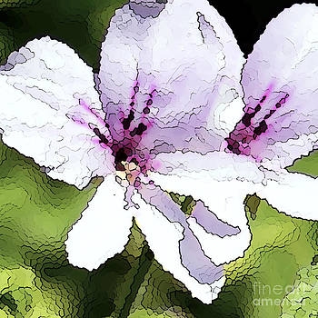 Artist and Photographer Laura Wrede - Purple Geranium