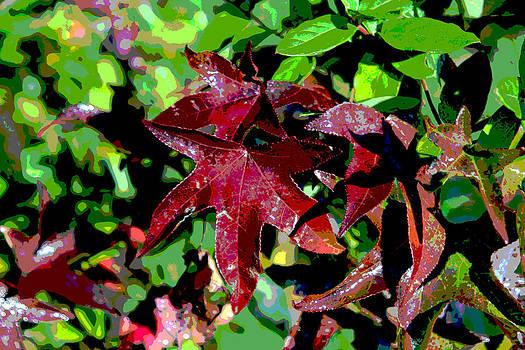 Purple Leaf by Bob Whitt