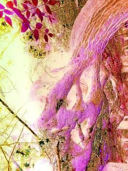 Purple Passion by Katina Cote