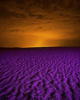 Purple Sands by Bob Bailey