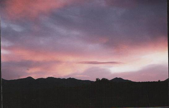 Purple Sunset by Vicky Mowrer