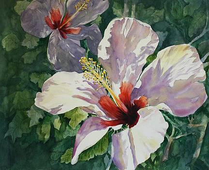 Radiant Light - Hibiscus by Roxanne Tobaison