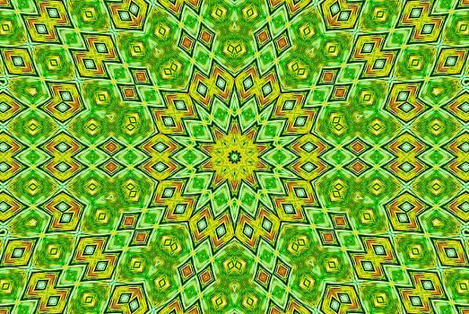 Radiating Patterns by Susan Leggett