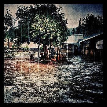 Rain And Hail. Nice Surprise, Since I by Maura Aranda
