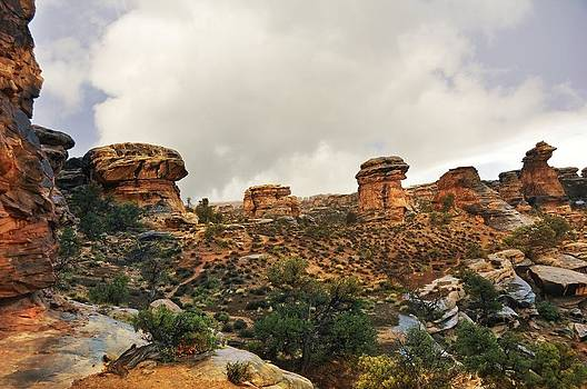 Marty Koch - Rain at the Needles District