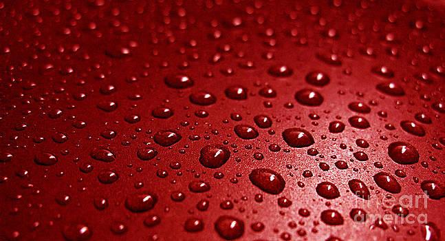 Rain drops Bloody Red  by Ausra Huntington nee Paulauskaite