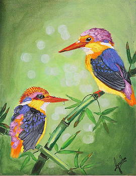 Rainbow bird-Oriental Dwarf kingfisher by Greeshma Manari