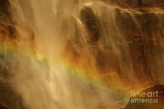 Adam Jewell - Rainbow Fury