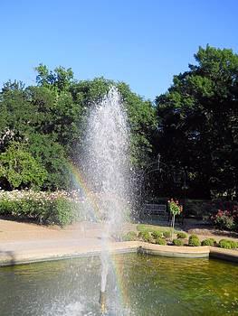 Lynnette Johns - Rainbow Garden