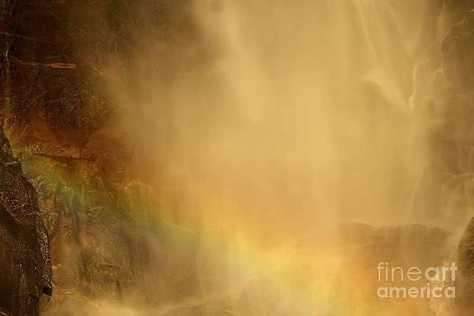 Adam Jewell - Rainbow In The Mist