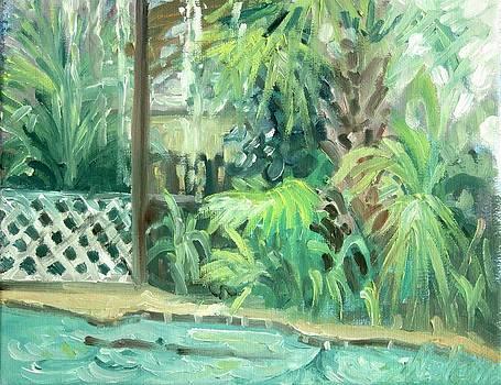 Rainy Day  by Sheila Wedegis