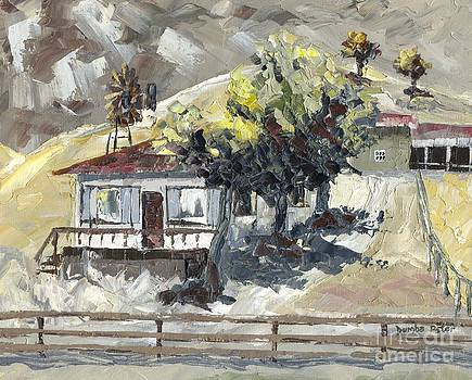 Ranch house by Dumba Peter