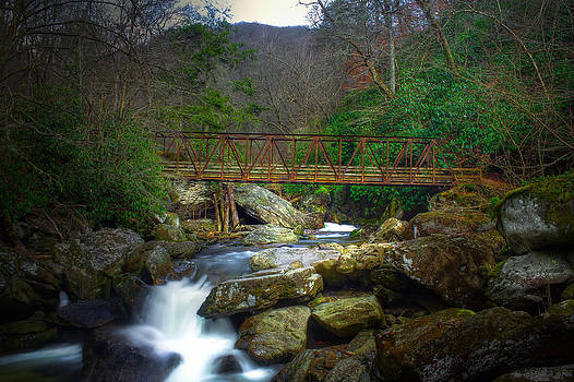 Raven Fork Footbridge by Christopher Mobley