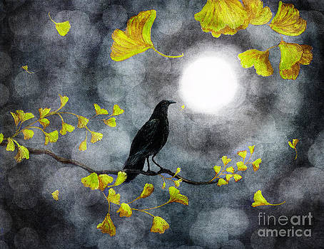 Laura Iverson - Raven in the Rain