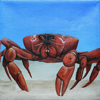 Red Crab by Cindy D Chinn