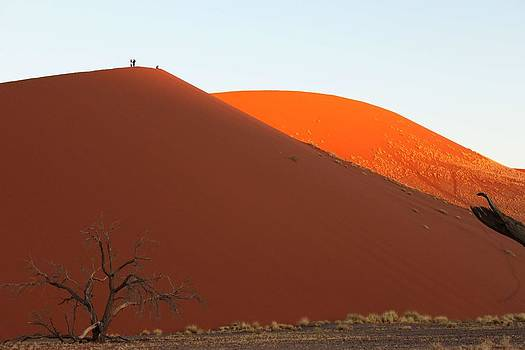 Red Dunes Contrasted by Nolan Taylor