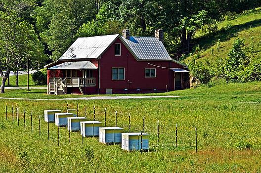 Red Farmhouse by Susan Leggett