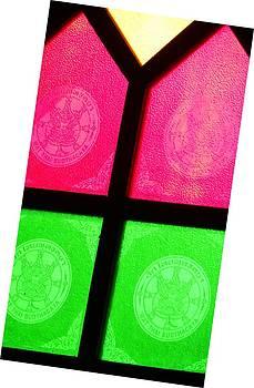 Red n Green by Sachin Manawaria
