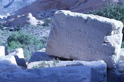Red Rock Canyon Sandstone Blocks by Jay Warwick