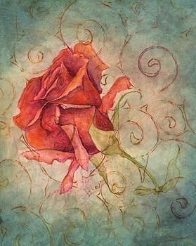 Red Rose Bud by Sara Bell