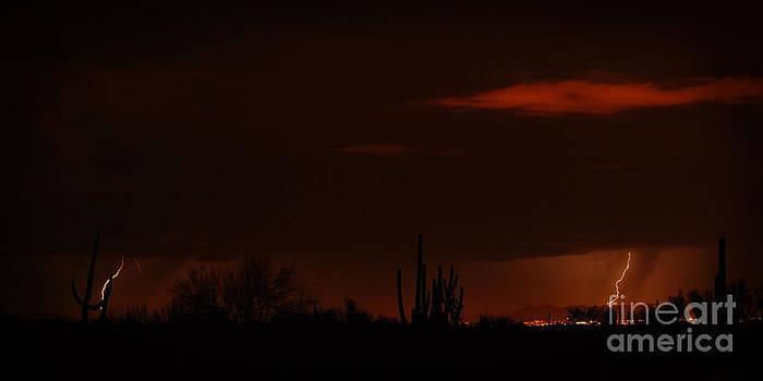 Red Skies by Tamara Pruessner