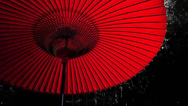 Red Umbrella by Laszlo Rekasi