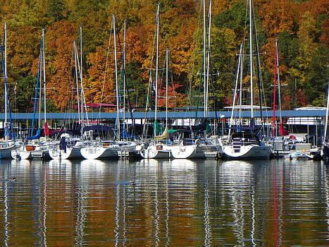 Reflecting Boats by Brenda Donko