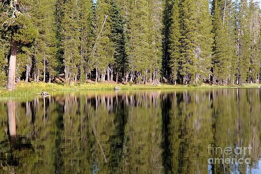 Adam Jewell - Reflections Along Summit Lake