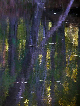 Terry Eve Tanner - Reflections of Monet