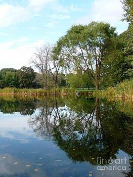 Anna  Duyunova - Reflections of New York. Central Park