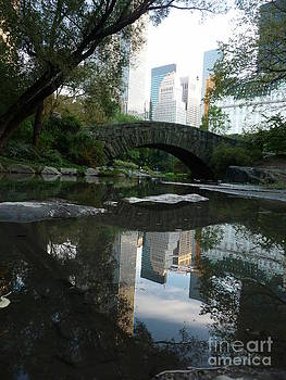 Anna  Duyunova - Reflections of New York. Through Looking Glass