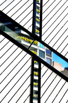 Andrea Kollo - Reflections on a Theme