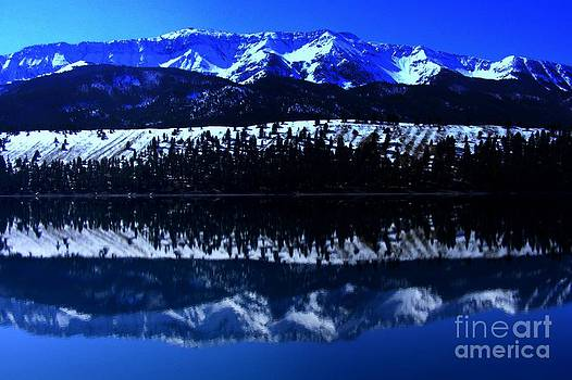 Reflections by Steve Patton