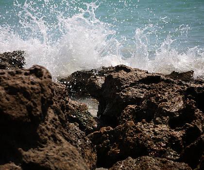 Refreshing Splash by Monica Lahr