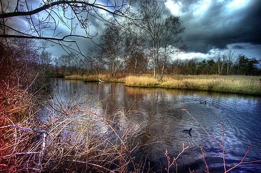 LAWRENCE CHRISTOPHER - REIFEL IN WINTER 7