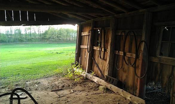 Reifsteck Farm 4 by Robert Foss