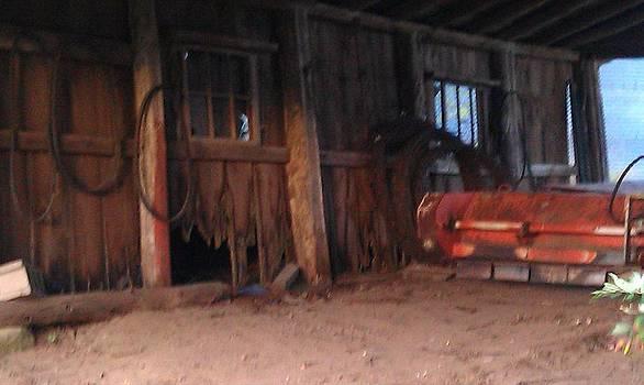 Reifsteck Farm 5 by Robert Foss