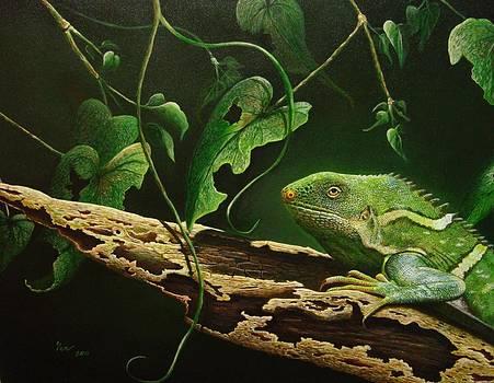 Relishing Nature by Pravin  Sen