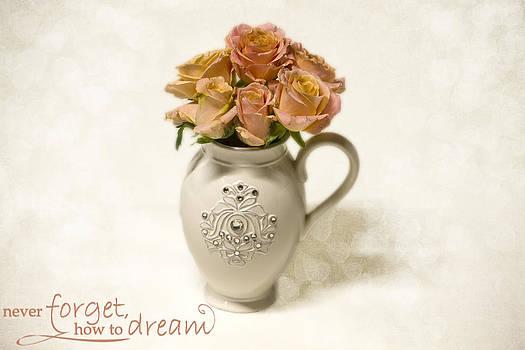 Remember to dream by Taschja Hattingh