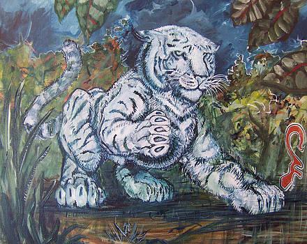 Rene Tigre by Christian Kolle