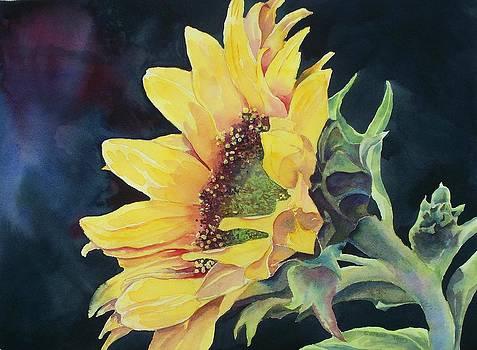 Renee's Sunflower by Celene Terry