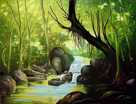Rio Matapalo by Hans Doller