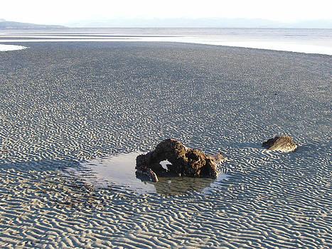 Marilyn Wilson - Rippled Sand