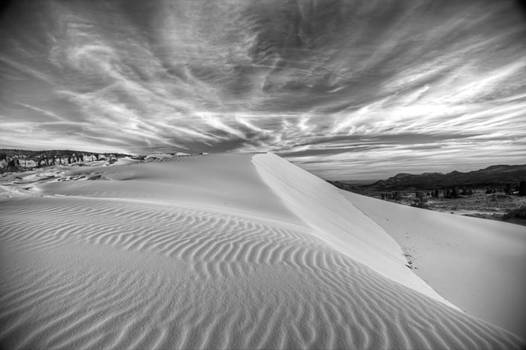 Ripples in the sand by Jeremy D Taylor