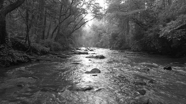 River Gaze by Ginger Wemett