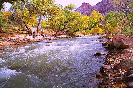 River in Autumn by Sharon I Williams